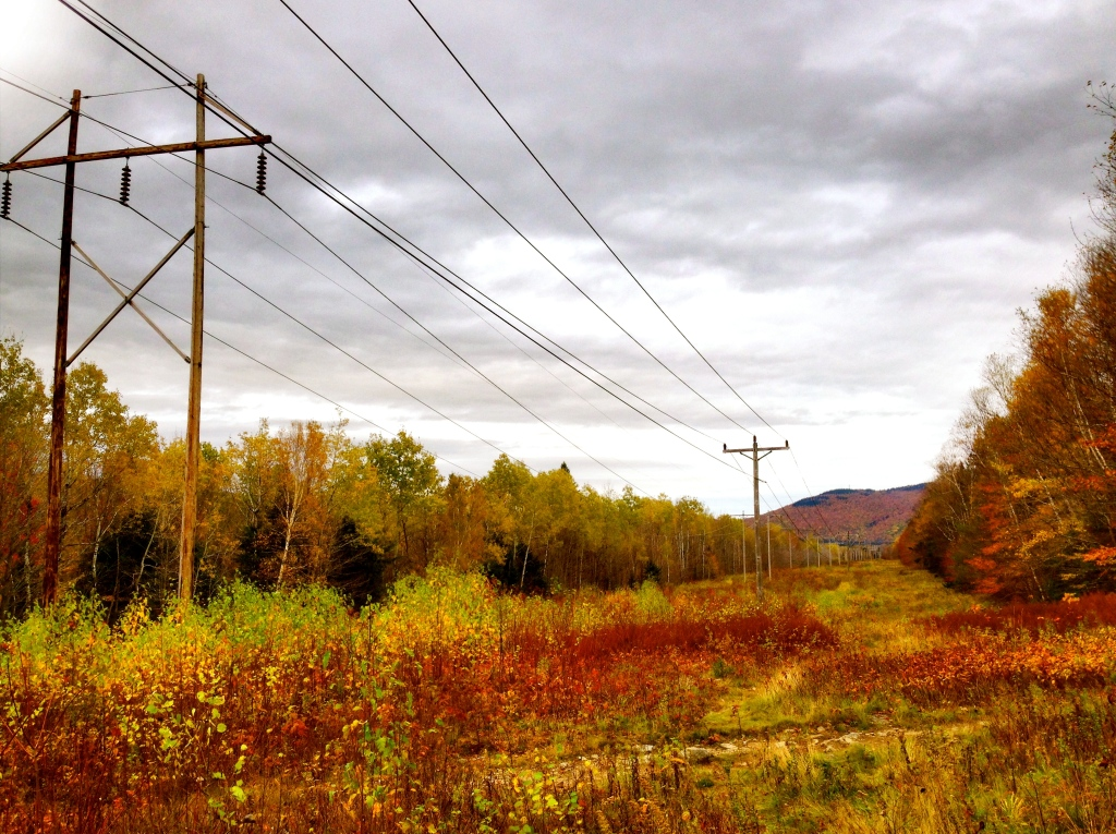 Power lines parallel to Route 2, Coös County, NH.