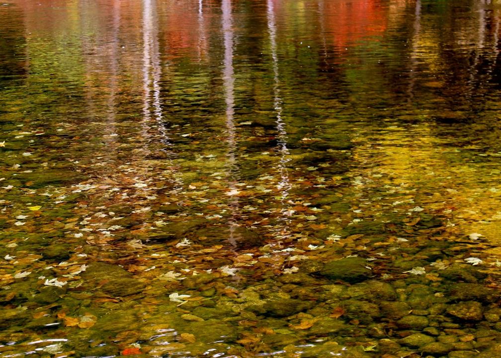 Androscoggin River, Gorham, NH.