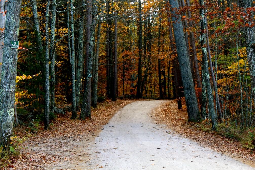 Chocorua Lake Road, Chocorua, N.H.