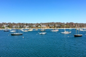 Boats in harbor, Martha's Vineyard, MA.