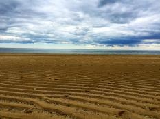 Dunes, Wood Head, Provincetown, Cape Cod, MA.
