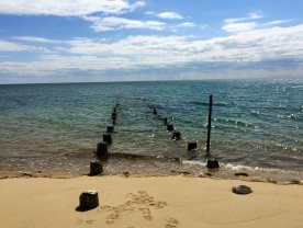 Old pilings, Truro, Cape Cod, MA.