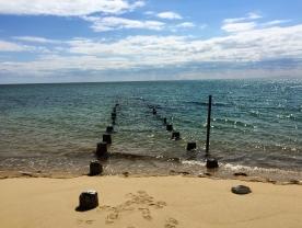 Old pilings, Truro, Cape Cod, MA.