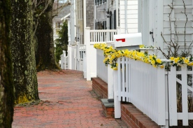 Sidewalk, Nantucket Island.