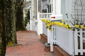 Sidewalk, Nantucket Island.