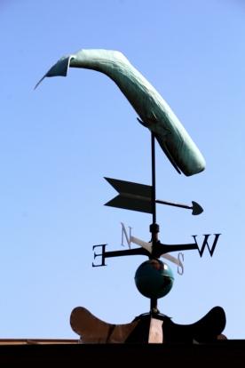 Sperm whale weather vane