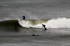 Surfers, eastern shore, Cape Cod, MA.