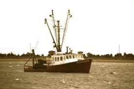 Fishing boat, south shore, Cape Cod, MA.