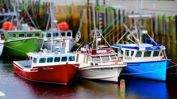 Fishing boats at extreme low tide, Sandford, Nova Scotia