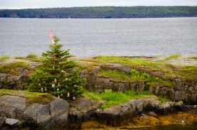 Fisherman's Christmas tree decorated with floats, Blue Rocks, NS
