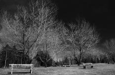 Park, Miles Pond, Vt.
